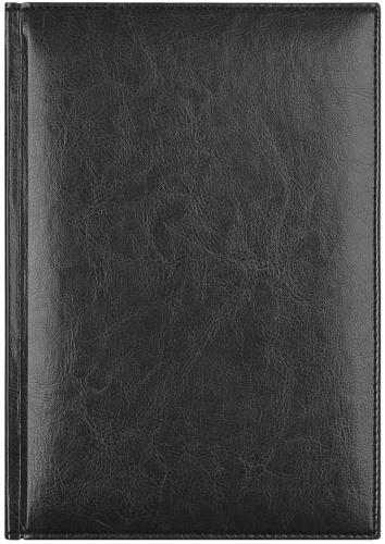 Avanzo Daziaro L1765001-011 Eжедневник датированный А5 Birmingham, Черный