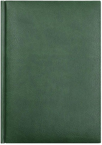 Avanzo Daziaro L1765003-041 Ежедневник датированный А5 Marseille, Зеленый