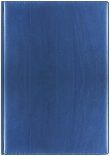 Nazarenogabrielli 170548826S-030 Ежедневник датированный А4 Reina, Синий