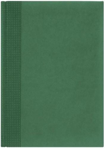 Nazarenogabrielli 1705450220-141 Ежедневник датированный А5 Velvet, Зеленый