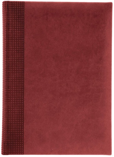 Nazarenogabrielli XX05451220-420 Ежедневник недатированный Velvet, бордовый